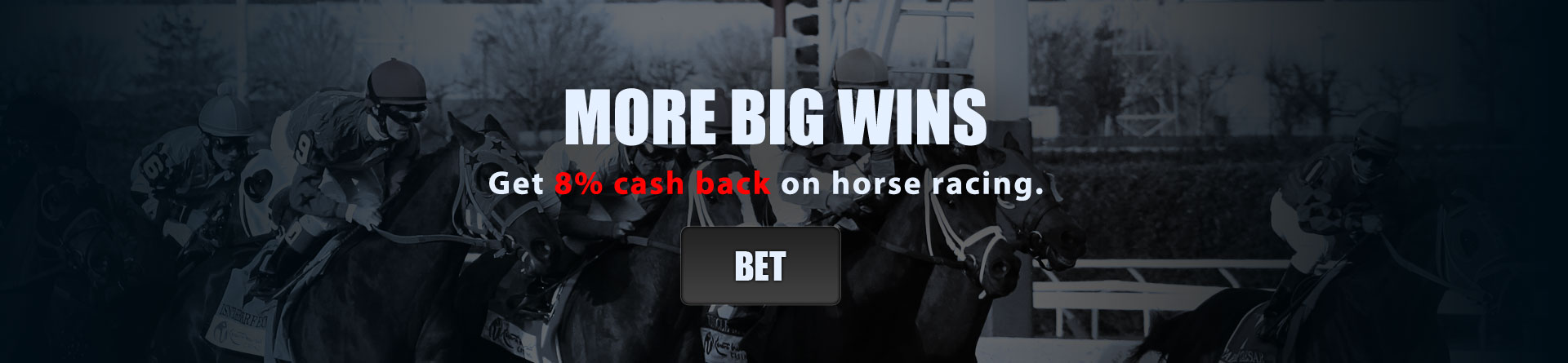 Bet On Horses!