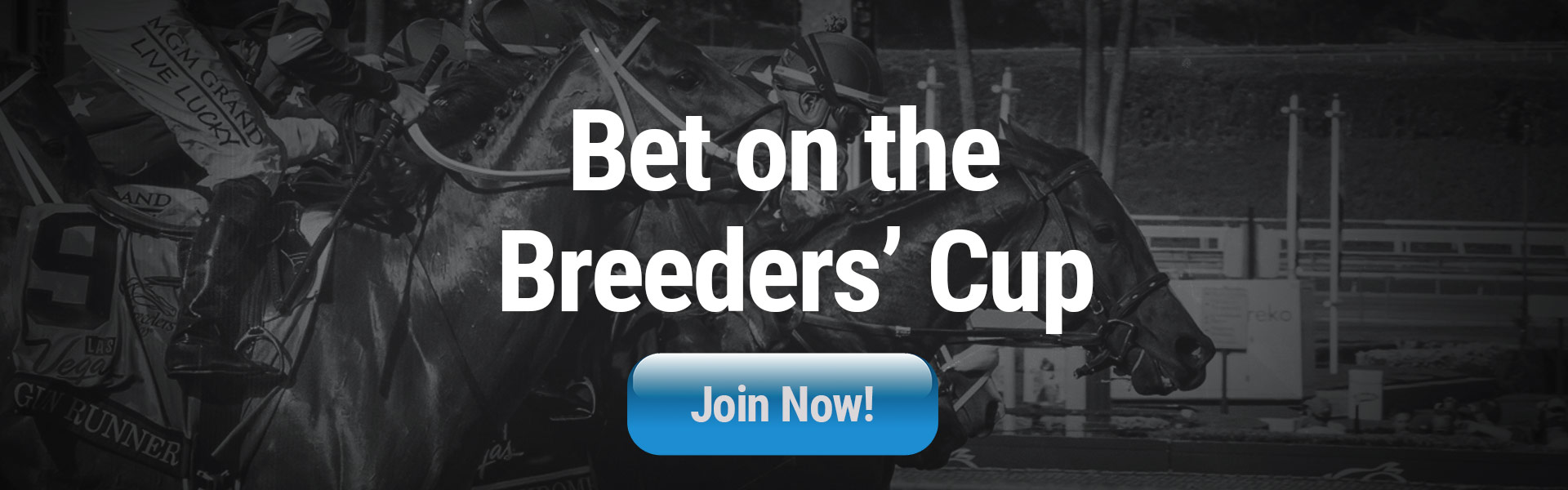 Online Horse Betting Bet On Breeders Cup Juvenile Fillies